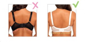 How To Wear Your Bra Video